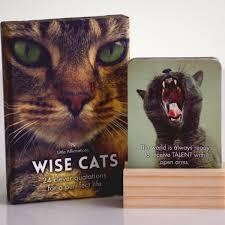 Affirmation Boxed Cards / Wise Cats