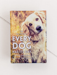 Affirmation Boxed Cards / Every Dog has it's Day