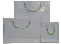 White Gloss Paper Bags with Green Handles 210gsm per 50 Bags