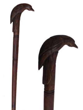 Walking Stick / Bird