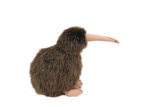 Sounds of New Zealand Soft Toys - Brown Kiwi