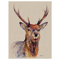 Stag Canvas