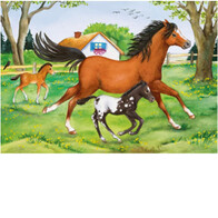 Ravensburger Puzzles - World of Horses