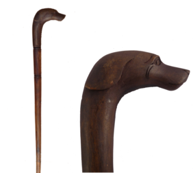 Walking Stick / Dog