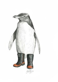 NZ Made Art Print / Krystal Lynn Penguin Pete 32cm x 43cm