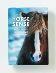 Affirmation Boxed Cards - Horse Sense