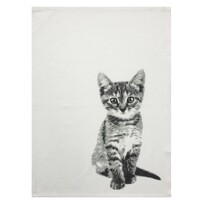 Tea Towel - Kitten