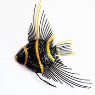 Metal Wall Art - Yellow Angel Fish