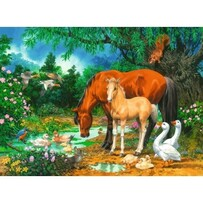 Ravensburger Puzzle - Ponies At The Pond