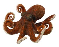 Collect A - Octopus