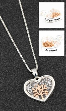 Necklace - Follow Your Dreams